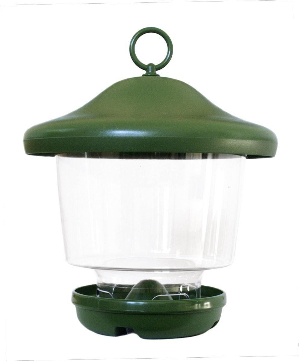 Futterlampe für Vögel