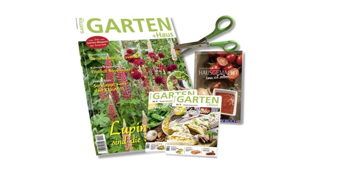 Kombi-Abo Garten+Haus + Rezepte