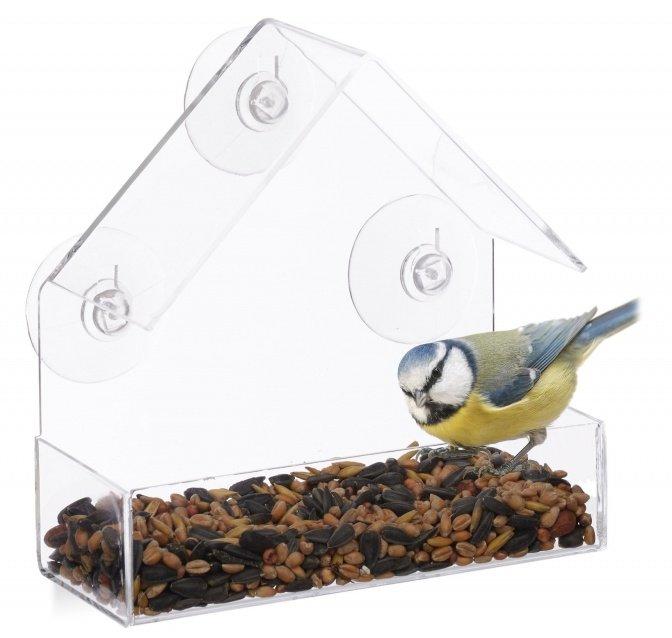 Vogelfutterstation fürs Fenster