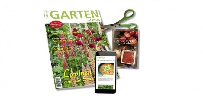 GARTEN+HAUS + ePaper Online
