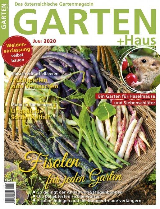 GARTEN+HAUS Ausgabe 6/2020