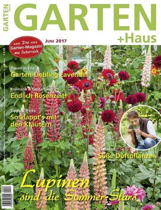 GARTEN+HAUS Ausgabe 6/2017