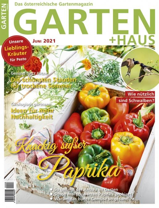 GARTEN+HAUS Ausgabe 6/2021