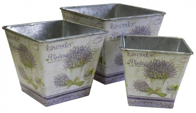 Topfset mit Lavendelmotiv